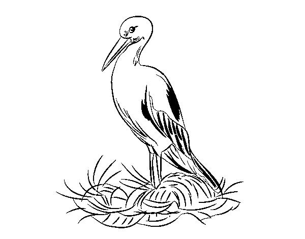 Coloriage de cigogne et le nid pour colorier - Cigogne dessin ...