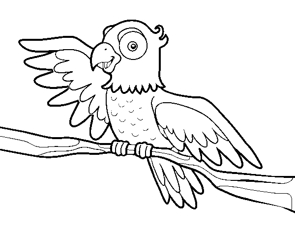Coloriage de perroquet en libert pour colorier - Coloriage de perroquet ...