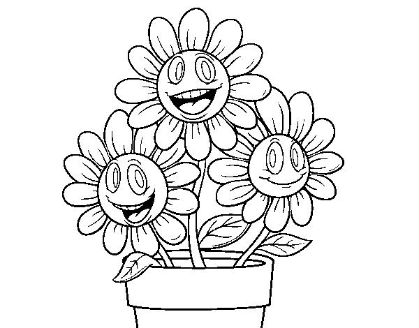 Coloriage Fleur Pot.Coloriage De Pot De Fleurs Pour Colorier Coloritou Com