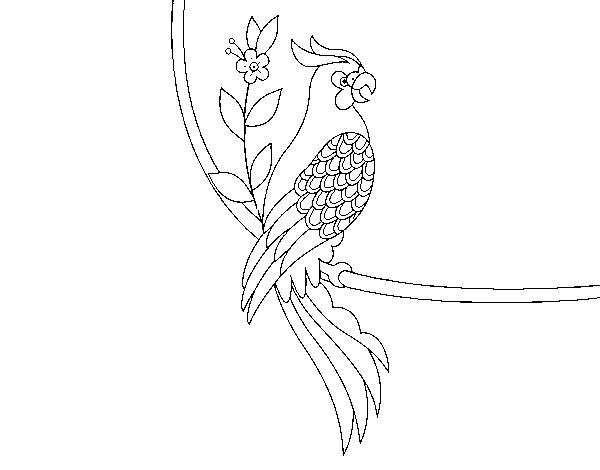 Coloriage de tatouage de perroquet pour colorier - Coloriage de perroquet ...