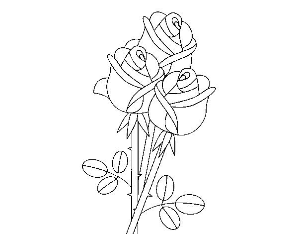 Coloriage De Un Bouquet De Roses Pour Colorier Coloritou Com