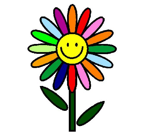 marguerite colorie par parascolaire