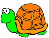 Coloriage Tortue colorié par maude