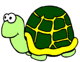 Coloriage Tortue colorié par jkg