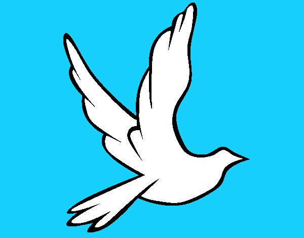 Dessin de Colombe de la paix en plein vol colorie par ...