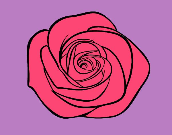 Dessin De Fleur De Rose Colorie Par Membre Non Inscrit Le 18 De