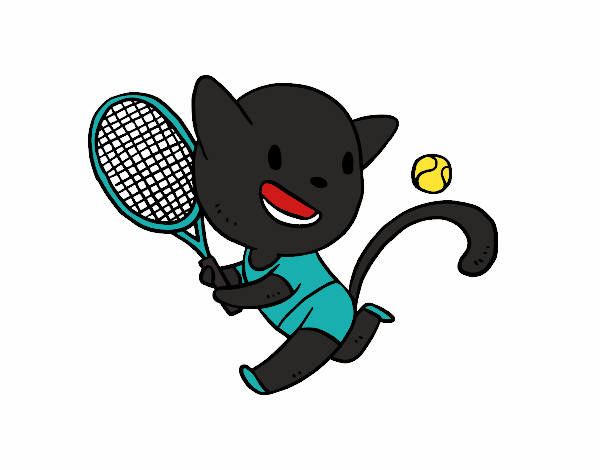 Chat tenis