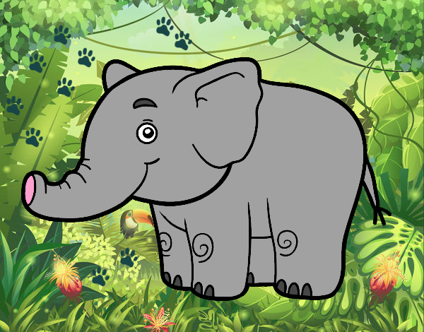 elephant dans la jungle