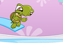 Splash Tortue